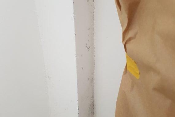 Scheuren en schimmels op wanden voor behandeling latex spuiten