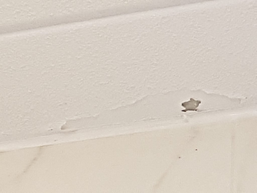 Badkamer Plafond Latex : Latex spuiten en herstellen van krimscheuren in wanden en plafonds